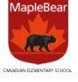 Maple Bear Canadian Preschool,  Sector 141 Logo